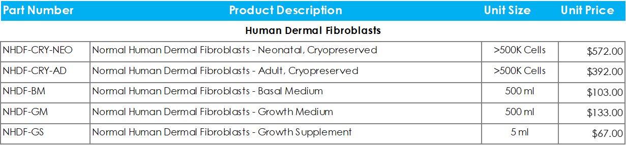 Human Dermal Fibroblasts