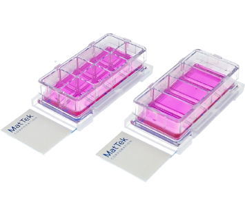 Chambered Cell Culture Slides