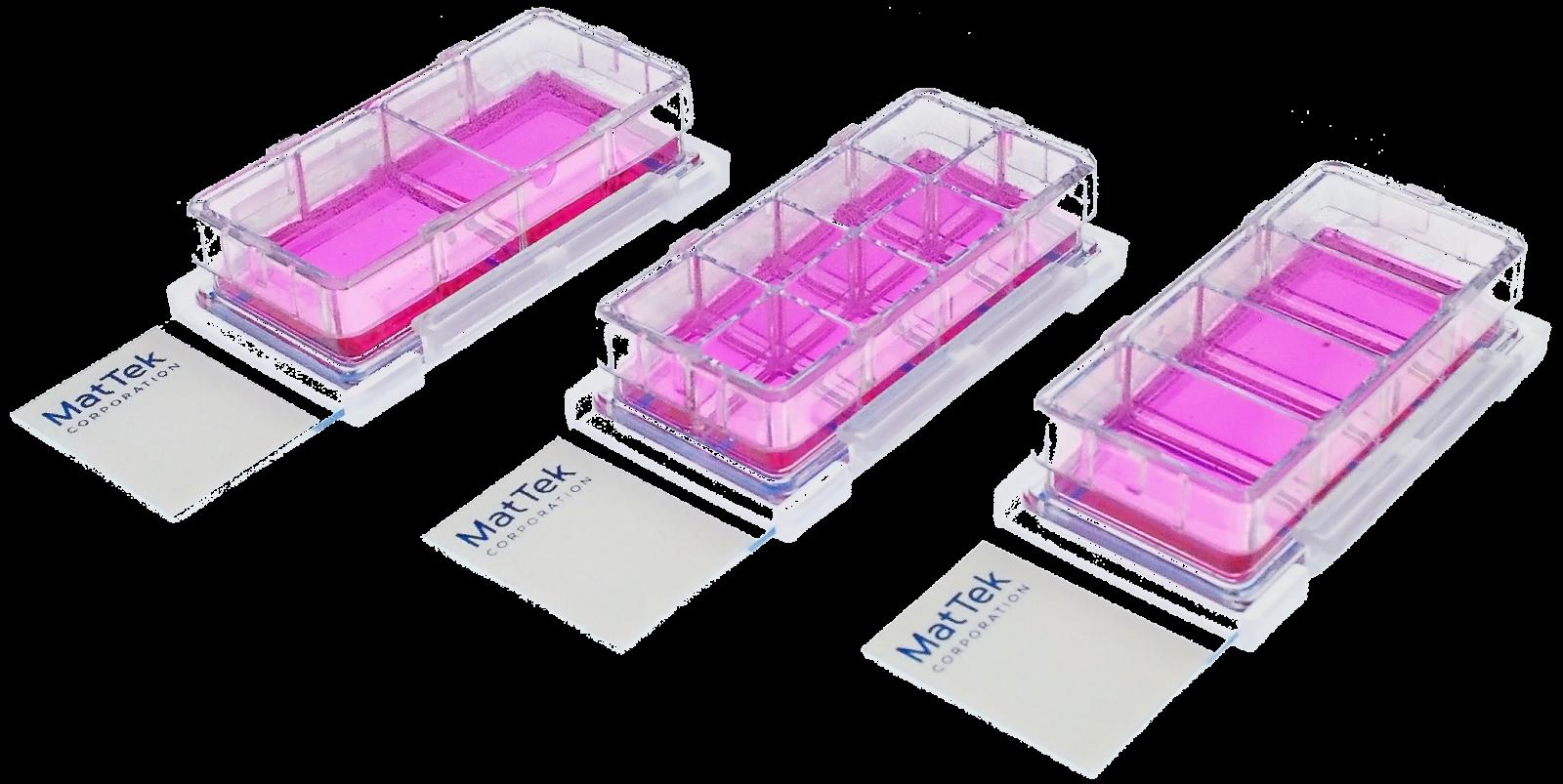 Chambered Cell Culture Slides Overview Mattek Corporation